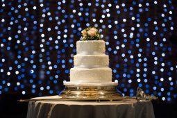 London Wedding Photographer Portfolio, Wedding Reception and Speeches (7 of 40)